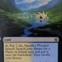 Flooded Strand alter #