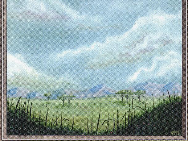 Plains (Trees)(IE)