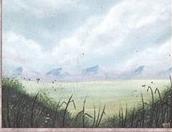 Plains (A) (CE)