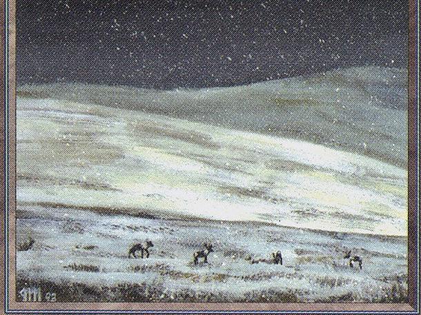 Tundra (CE)