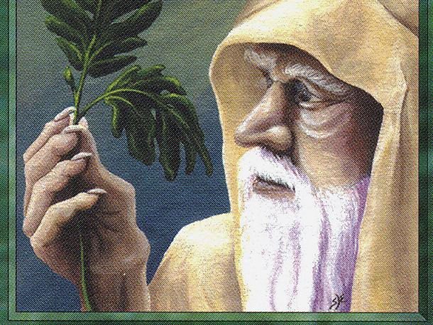 Ley Druid (CE)