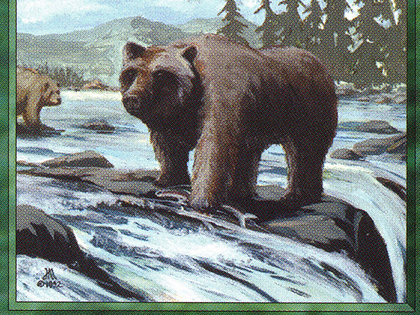 Grizzly Bears (CE)