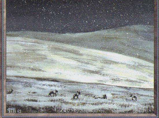 Tundra (IE)