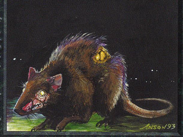 Plague Rats (IE)