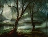 Swamp (39)