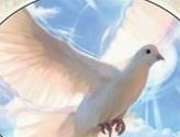 Bird Token (White)