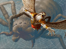 Spidery Grasp