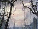 Swamp (252) - Full Art