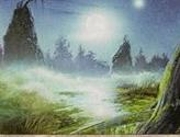 Swamp (Foggy Night)
