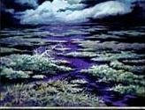Swamp - Camargue