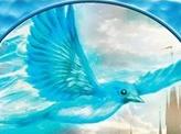 Bird Illusion Token