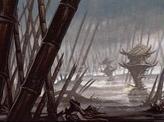 Swamp (144)