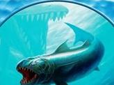 Fish Token (005)