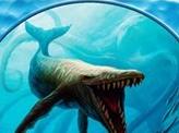 Whale Token (007)