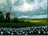 Plains - Lowlands, Netherlands