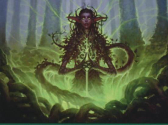 Woodland Mystic