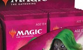 Throne of Eldraine - Collector Booster Pack Display [12 Packs]