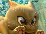 Cat Token (027)