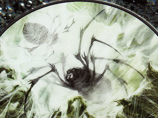 Spider // Saproling Double-sided Token