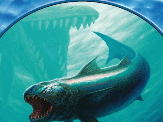Fish // Kraken Double-sided Token