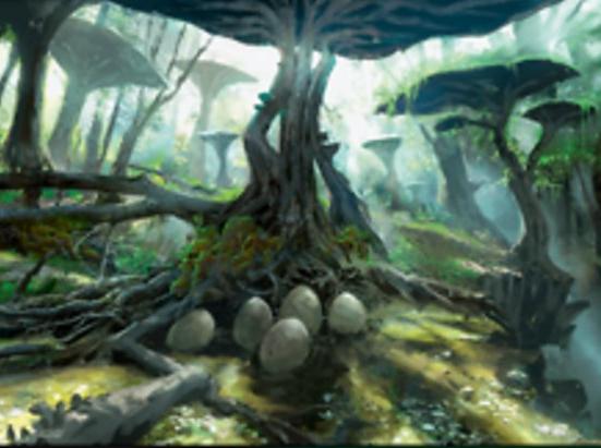 Jungle Hollow