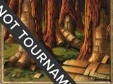 Karplusan Forest - 2001 Jan Tomcani (7ED)