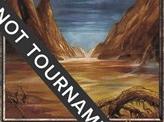 Swamp (339) - 2001 Tom van de Logt (MMQ)