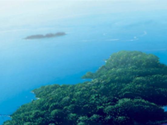 Island (375)