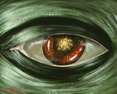 Image result for evil eye of orms art