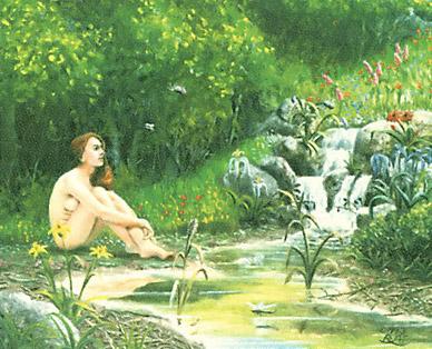 Sylvan Paradise