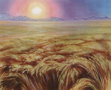 Plains (436)