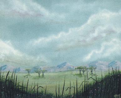 Plains (B)