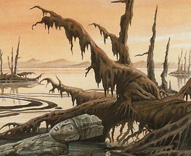 Swamp (172)
