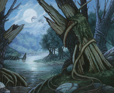 Swamp (349)