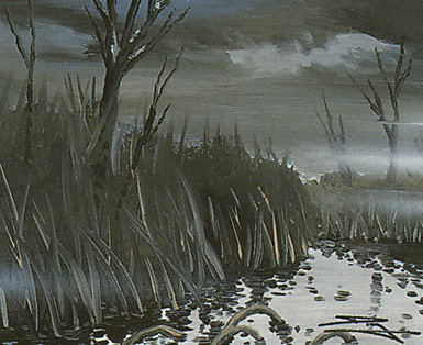 Swamp (164)