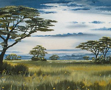 Plains (127)