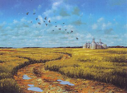Plains (334)