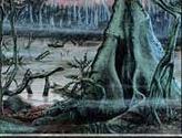 Swamp - Blue Pack (Beard, Jr.)