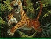 Pouncing Jaguar