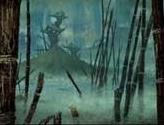Swamp (2005)