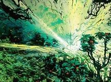 Explosive Vegetation