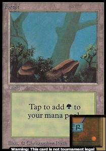 Forest (A) (CE) card from Collector's Edition