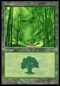 Forest - Broceliande