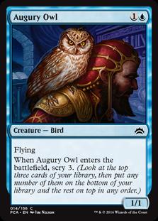 Augury Owl