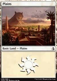 Plains (256)