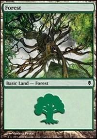 Forest (249a) card from Zendikar