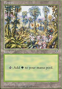 Forest (Pink Flowers Right) card from Mirage
