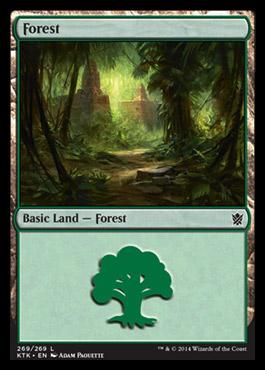 Forest (269) card from Khans Of Tarkir