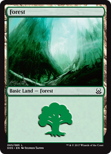 Forest (65)