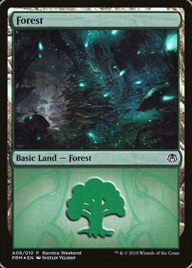 Forest - Golgari (A06)